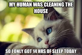 House Cleaning Memes - my human was cleaning the house so i only got 14 hrs of sleep