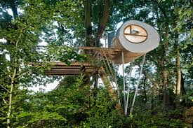 places elliptical pod around two oaks for treehouse djuren