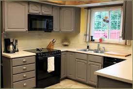 Kitchen Cabinet Paint Kit Espresso Kitchen Cabinets Color Schemes Rust Oleum Cherry Wood