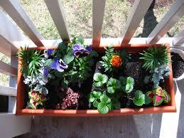 Apartment Patio Garden Ideas Balcony Decoration With Plants How To Make A Patio Garden Small