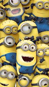minions comedy movie wallpapers 343 best i love the minions images on pinterest funny minion
