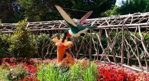 Botanical Gardens In Birmingham Al Garden Botanical Gardens Birmingham Al Luxury This Summer Animals