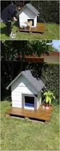pets cheap insulated dog houses lowes dog houses large igloo extra large dog house with porch lowes dog houses igloo dog houses