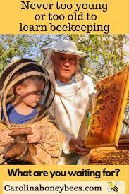 best 25 honey bee farming ideas on pinterest bee keeping