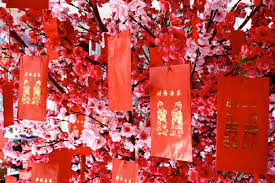 New Year Decoration Material by Chinese New Year Decorations And Flowers For Good Luck And