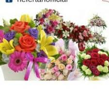 send flowers today beautiful flowers at nefertari florist send flowers today same