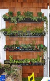 Urban Gardens How To Create Your Own Urban Garden