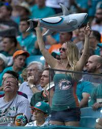 Tennessee travel fan images Miami dolphins vs tennessee titans photo gallery of week 5 action jpg