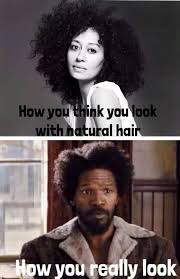Natural Hair Meme - 1000 images about natural hair on pinterest black girls