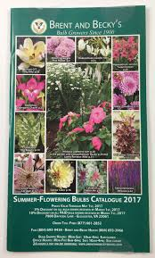 list of fall flowers get free seed catalogs and plant catalogs