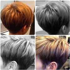 pictures of back pixie hairstyles back view of attractive pixie haircuts haircolor trends