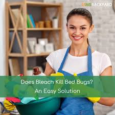 Can Bleach Kill Bed Bugs Does Bleach Kill Bed Bugs An Easy Solution Last Updated Nov 2017