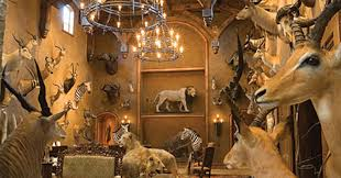 these 11 hunters u0027 trophy rooms are completely unbelievable