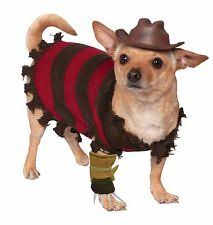 Dog Halloween Costumes Adults Costumes Dogs Ebay
