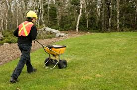 lawn care programs for do it yourself benefits of professional lawn care