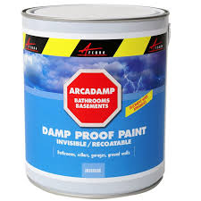 Sealant Paint For Damp Interior Walls Damp Proof Paint Eliminates Damp In Bathrooms And Basements Cures