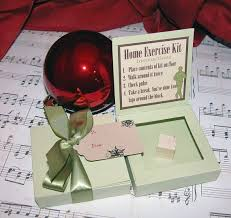 293 best christmas gifts images on pinterest funny gifts