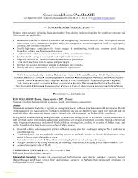 report to senior management template lovely report to senior management template report to senior