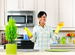 küche putzen küche putzen die grundlagen zum putzen der küche putzen net