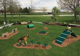 Garden Ideas For Dogs Garden Ideas For Dogs Dogs And Dogscaping Pinterest Garden