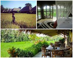 16 unique hotels in bali that will show you its crazy creative side