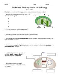 fillable online worksheet photosynthesis cell energy fax email