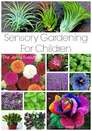 Gardening Ideas For Children Sensory Garden Ideas For Children Sensory Garden Garden Ideas
