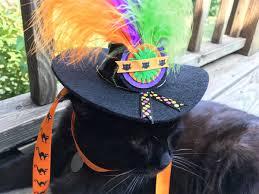 Halloween Express Nashville Tennessee by 100 Acme Halloween Party 945 Best Diy Halloween U0026