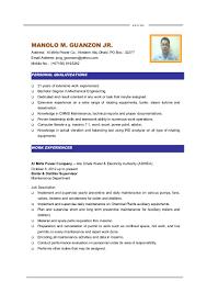 mm guanzon cv maintenance engineer