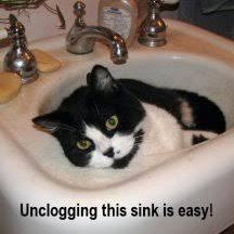 clogged bathroom sink drain clogged bathroom sink drain make your clogged sink drain like it