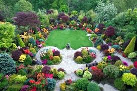 Bushes For Landscaping Cheap Bushes For Landscaping Small Bushes Landscaping Plant