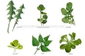feuille de cuisine alimentation et cuisine alimentation légumes légumes feuilles