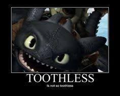 Toothless Meme - toothless memes google search toothless memes pinterest