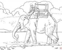 baby shower elephant coloring pages baby elephant coloring