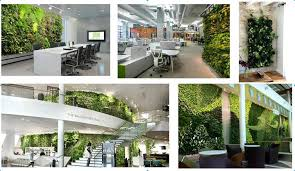 vertical garden office plant wall indoor living wall buy plant