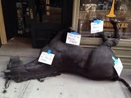 Soon Horse Meme - t mind this dead horse