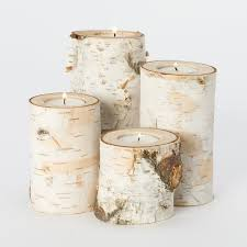 House Home Decorating by Fallen Birch Branch Votive Set In House Home Home Décor Room Décor