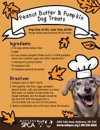 recipes for dog treats bake your own peanut butter pumpkin dog treats maryland spca