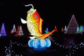 niagara falls christmas lights free images light night celebration chinese holiday fish