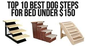doggie steps for bed top 10 best dog steps for bed under 150 youtube