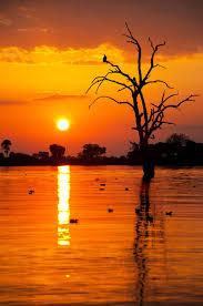 Sunset Orange by Why U0027s The Sun Red During Sunrise And Sunset Pitara Kids Network