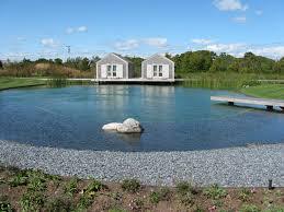 swimming pond houzz