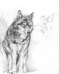 wolf moon by mayshing on deviantart