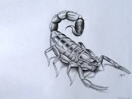 index of wp content gallery scorpion tattoos
