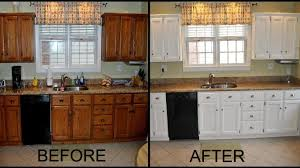 Refinishing Kitchen Cabinet Doors Painted Kitchen Cabinets With Wood Doors Painting Your Kitchen