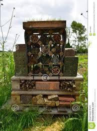 hous hous for bugs stock photo image 98519962