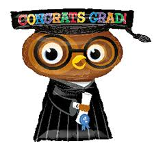 graduation owl graduation owl supershape foil balloon