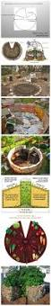 17 best images about permaculture on pinterest
