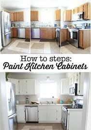 Kitchen Cabinets With Hinges Exposed Kitchen Cabinet Refresh Lesmurs Info