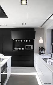 Black And White Kitchen Ideas 693 Best Kitchens Images On Pinterest Kitchen Architecture And